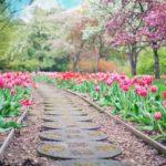 Piękny oraz uporządkowany ogród to zasługa wielu godzin spędzonych  w jego zaciszu podczas pielegnacji.